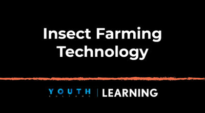 Insect Farming Technology